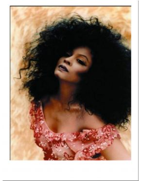 Diana Ross Black Afro Costume Wig